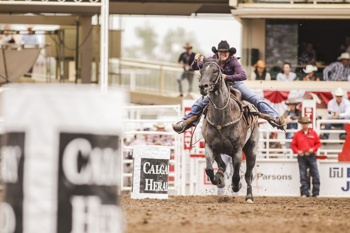 A Barrel Racer at the Calgary Stampede